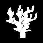 icono abstracto que representa arrecifes
