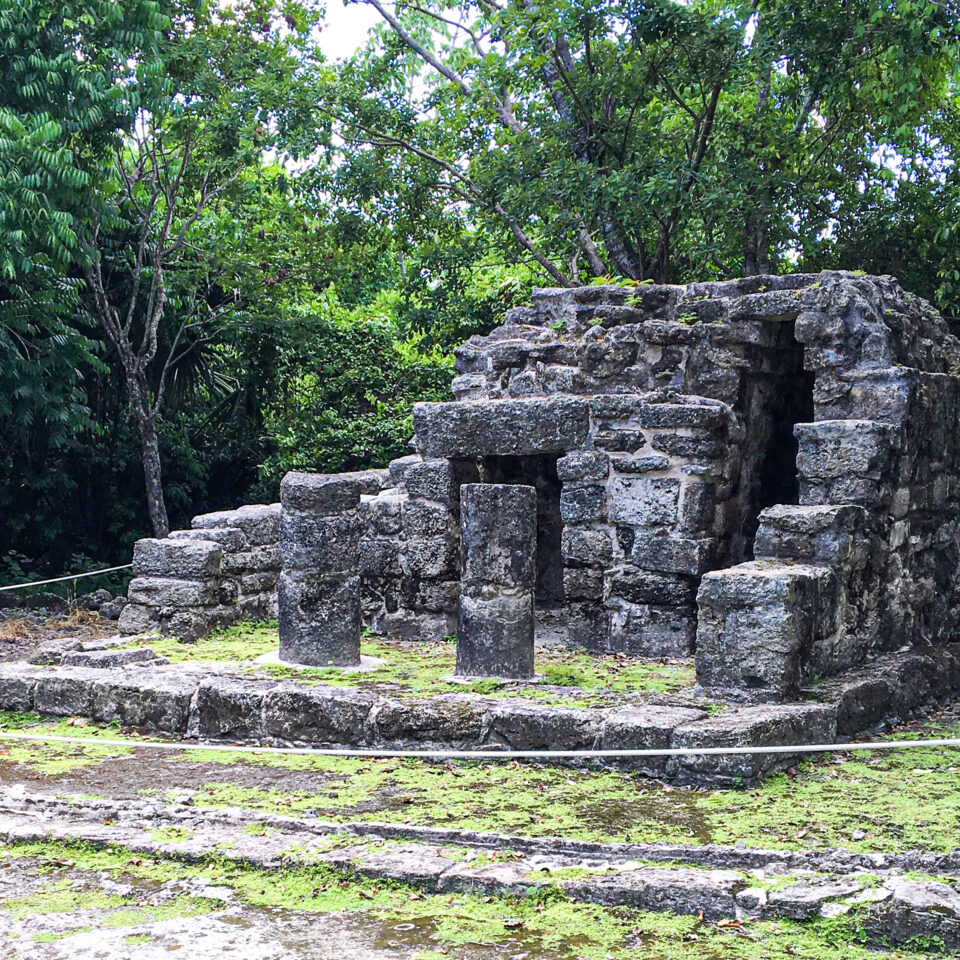 Imagen san gervasio cozumel, ruina chichan-nah cozumel, zona arqueologica, selva cozumel