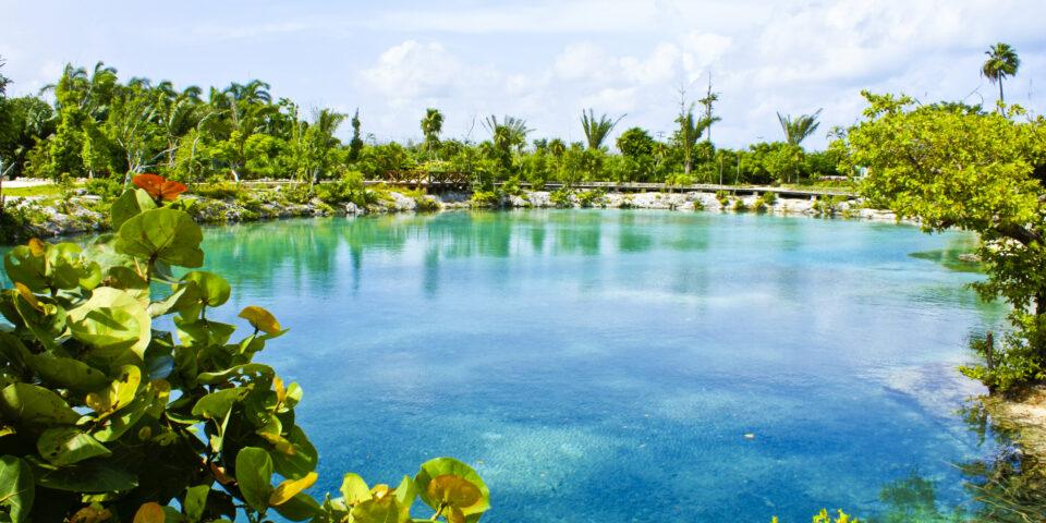 Imagen laguna de Chankanaab, uvas cozumel, flora cozumel, parque nacional