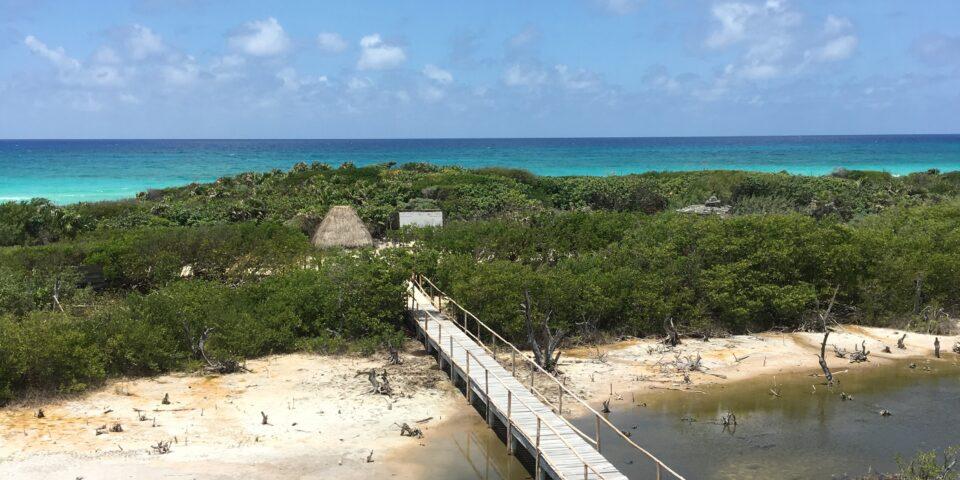 Imagen muelle, laguna de colombia, punta sur, manglar y mar caribe de fondo