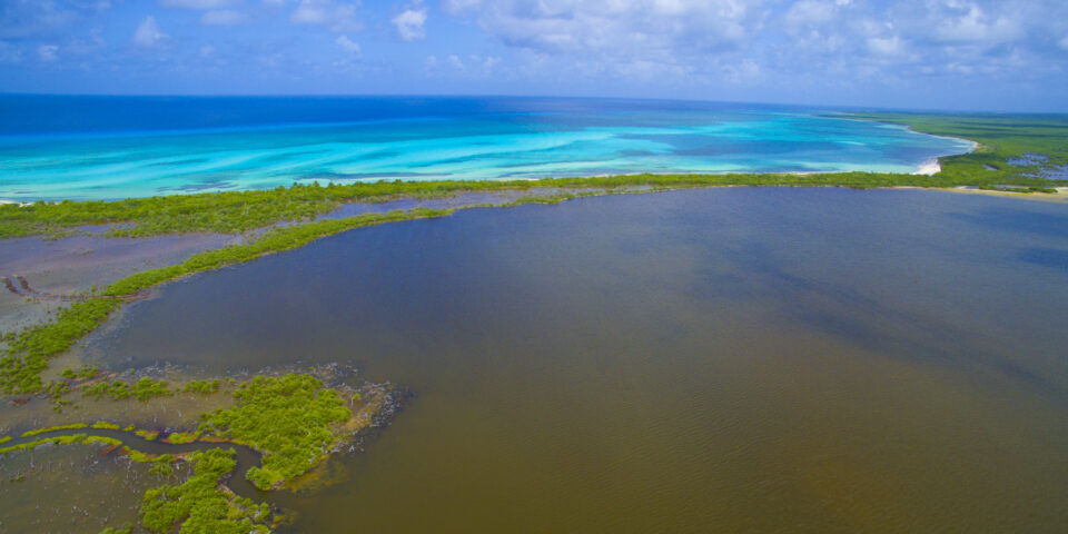 Imagen laguna Colombia cozumel, mar caribe, encuentro, reserva natural, mar turquesa
