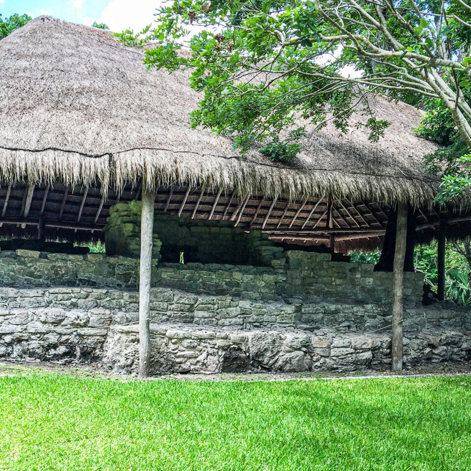 Imagen ruina el álamo, san gervasio cozumel, zona arqueologica, palapa y selva de fondo