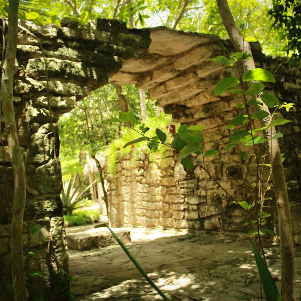 Chankanaab cozumel, selva cozumel, replicas prehispánicas